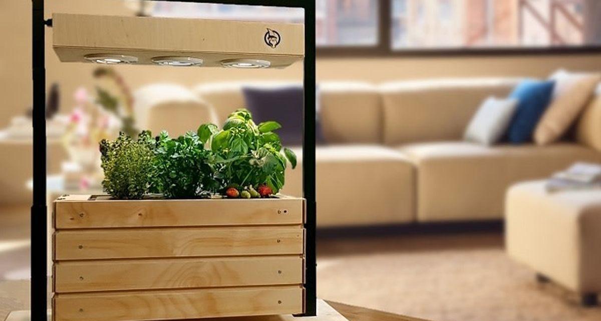 Gartenzwerg Has Designed a Smart Garden for Your House 1