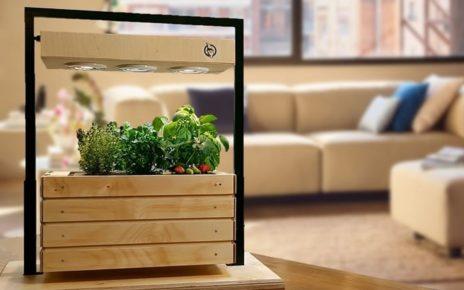 Gartenzwerg Has Designed a Smart Garden for Your House 2
