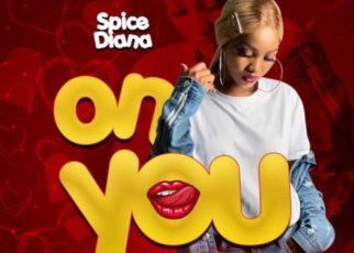On You – Spice Diana Lyrics | Spurzine