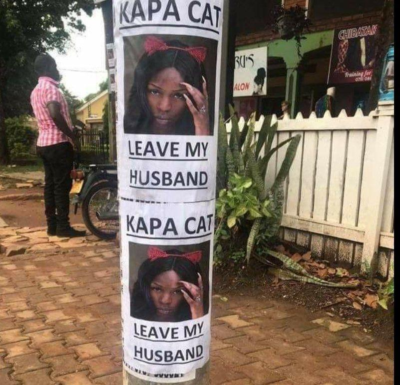 Pissed Off Wife Puts Up Posters of Kapa Cat | Spurzine