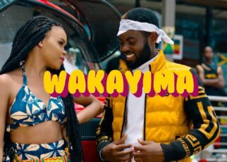 Wakayima - Bebe Cool Lyrics   Spurzine