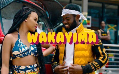 Wakayima - Bebe Cool Lyrics | Spurzine